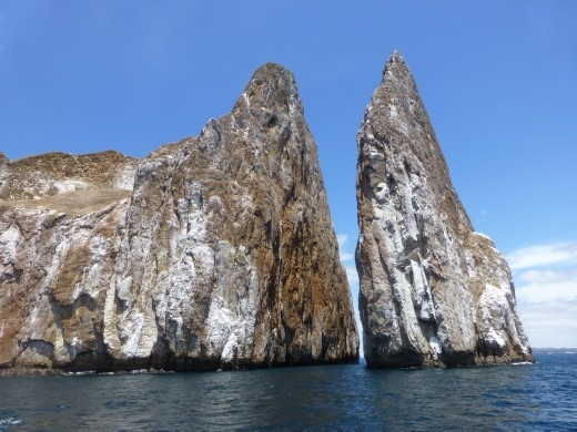 Snorkelling at Kicker Rock with 40 sharks was a real highlight.