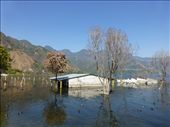 The lake has risen 5 metres in 2 years!: by steve_and_emma, Views[232]