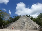 The ruins at Coba were pretty impressive.: by steve_and_emma, Views[147]