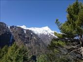 Heading up towards Namche Bazzar.: by steve_and_emma, Views[237]