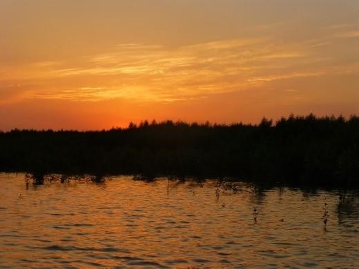 Sunset in the Sundabans.
