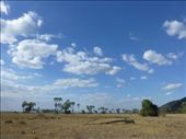 A safari park in Africa with no other jeeps!: by steve_and_emma, Views[230]