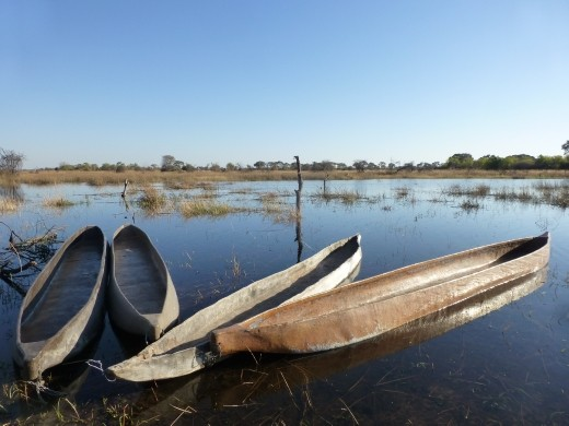 Mokoro, the traditional boats used in the Okavango Delta.