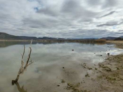 Camdeboo has a large lake which adds to its scenery after the very dry Karoo. Bet the animals love it too.