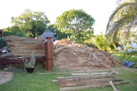 The thatch comes from Limpopo region and only gets harvested at the first frost, which is usually in May.