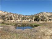 Avis Dam Nature Reserve near Windhoek.: by steve_and_emma, Views[0]