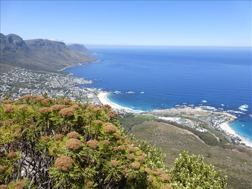 View on the way up Lion's Head.