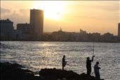 Aspects of the traditional fishing culture continue in the city.: by sthompson_fj, Views[174]