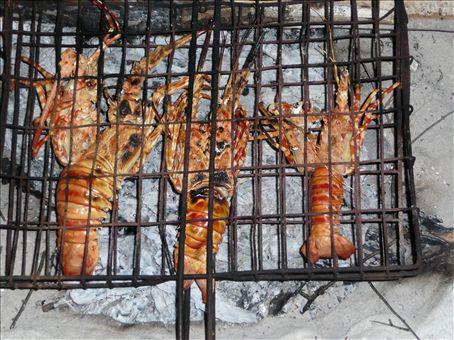 yummie crayfish