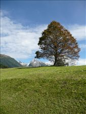 above Mayrhofen: by stinale, Views[206]