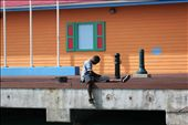 Boy is fishing on the pier. Looking for food.: by stmartin, Views[96]