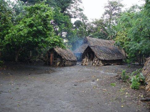 Village huts in Yakel village, Tanna island, Vanuatu