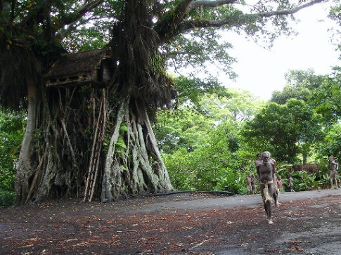 Treehouse in Yakel village, Tanna, Vanuatu. Some of the tribal elders lead a procession before performing some traditional dances
