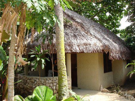 Our Grass hut
