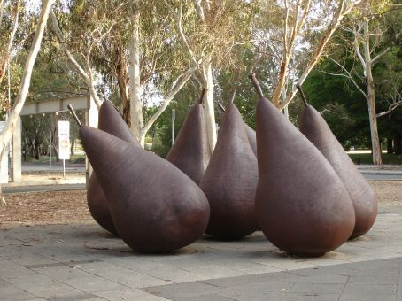 some pairs of pears at the National Gallery Canberra