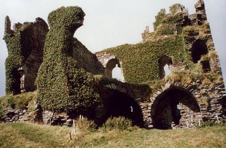 The ivy covered ruins of 15th Century Ballycarbery Castle, County Kerry, Ireland.
