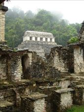 Temple of Inscriptions - Palenque: by stu_n_anna, Views[424]
