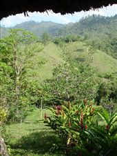 View from the room at el retiro in Lanquin: by stu_n_anna, Views[148]