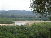 Madidi national park: by stu_n_anna, Views[187]