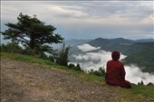 Meditation.A Buddhist monk is engaged in open air meditation in the abode of God: by subrata, Views[920]
