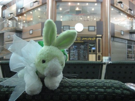 Travel Rabbit in Brunei transit lounge
