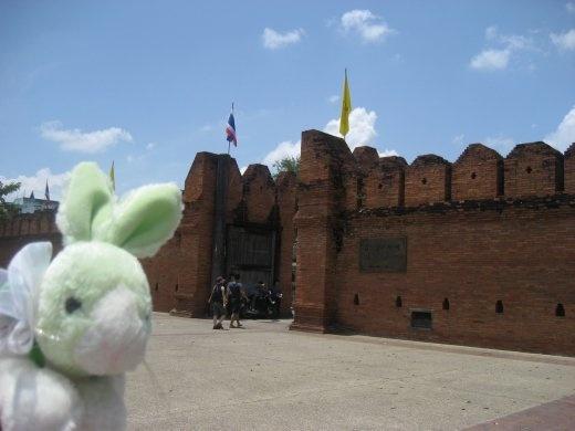 Travel Rabbit sneaks a peek at Tha Pae Gate