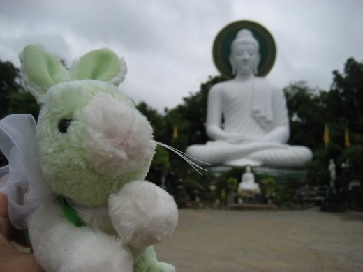 The White Buddha, Chiang Rai