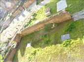 Largo Di Torre Argentina - sacred area: by supergg, Views[20]