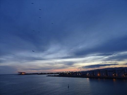 Barcelona sunset; birds; plane