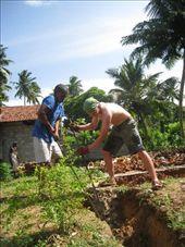 Tristan and Nilatha get the hard jobs!: by susannah_palk, Views[136]