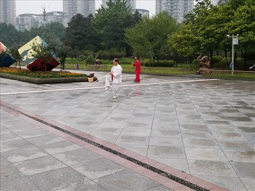 And, in addition to the badminton players, there were people practicing tai chi as well.
