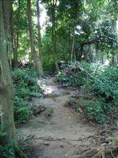 Luang Prabang: by sven, Views[283]