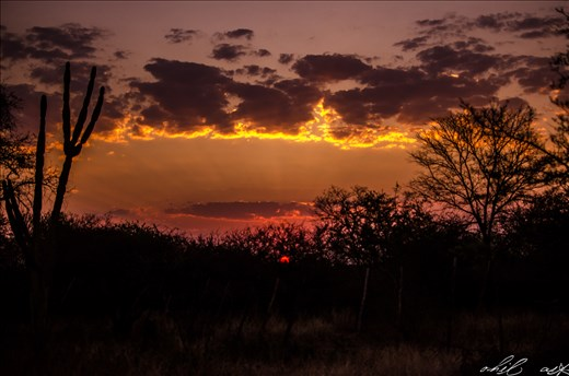Nothing like an African Sunset