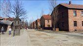 Inside Auschwitz 1: by swathi, Views[153]