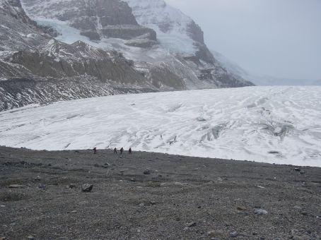 athabasca glacier - there are people on the edge of the glacier - just to igve you an idea of how big it is! If global warming continues at its current rate this glacier would have completely melted by 2080. It has already retreated by a massive distance since 1920
