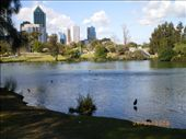 Perth Sept 08: by swhateley, Views[175]