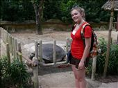 lisa and the massive tortise : by t_l, Views[321]