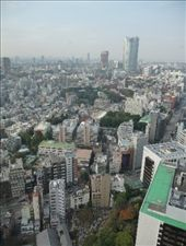 The view from Tokyo Tower: by tara_and_mike, Views[118]