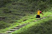 Young Monk rushes towards prayer hall.: by tawangbygurdasdua, Views[139]