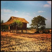 A village hut in Cambodia, kids playing by the tree: by taylahjade1128, Views[348]