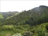 Starting the climb into the hills...: by taylortreks, Views[145]