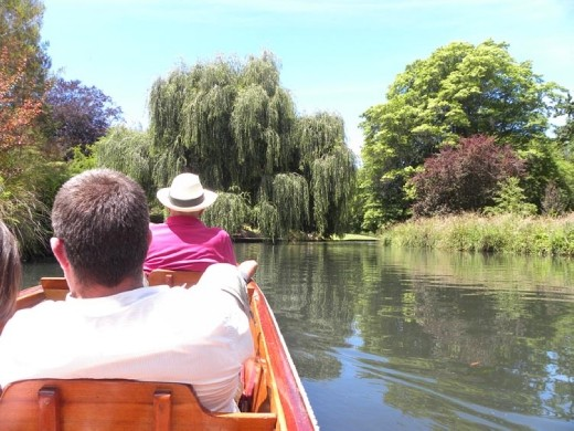 There were lots of beautiful trees lining the Avon river. Quiet and peaceful...