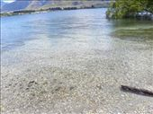 Crystal clear water...: by taylortreks, Views[87]