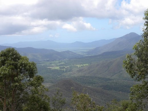 And this is what we came for! The panoramic views are of the Wooroonooran National Park.