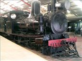 Rolling stock included vintage steam locomotives.: by taylortreks, Views[89]