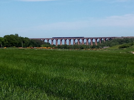 The Culloden Viaduct overlooked the glen -- the train was an added bonus