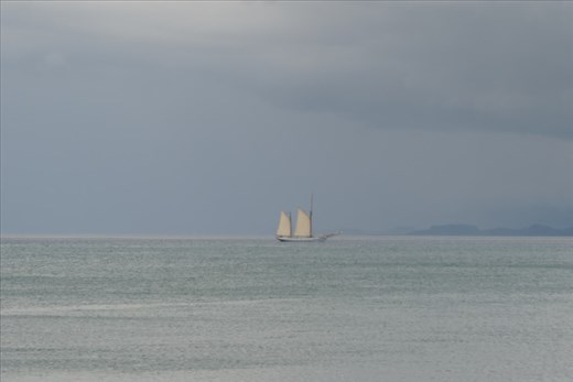 On our return trip, we saw a sailing ship navigating the Sound of Iona