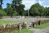 Temple-Wood: by taylortreks, Views[37]
