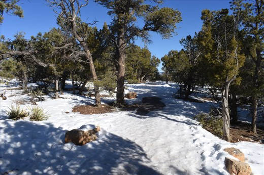 We saw plenty of snow but no Canyon ... yet.