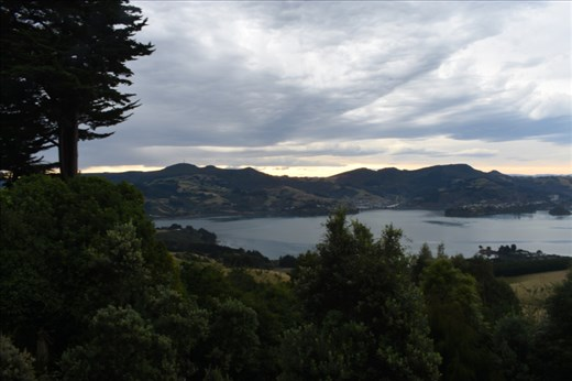But your reward is a panoramic view across Dunedin Harbour.